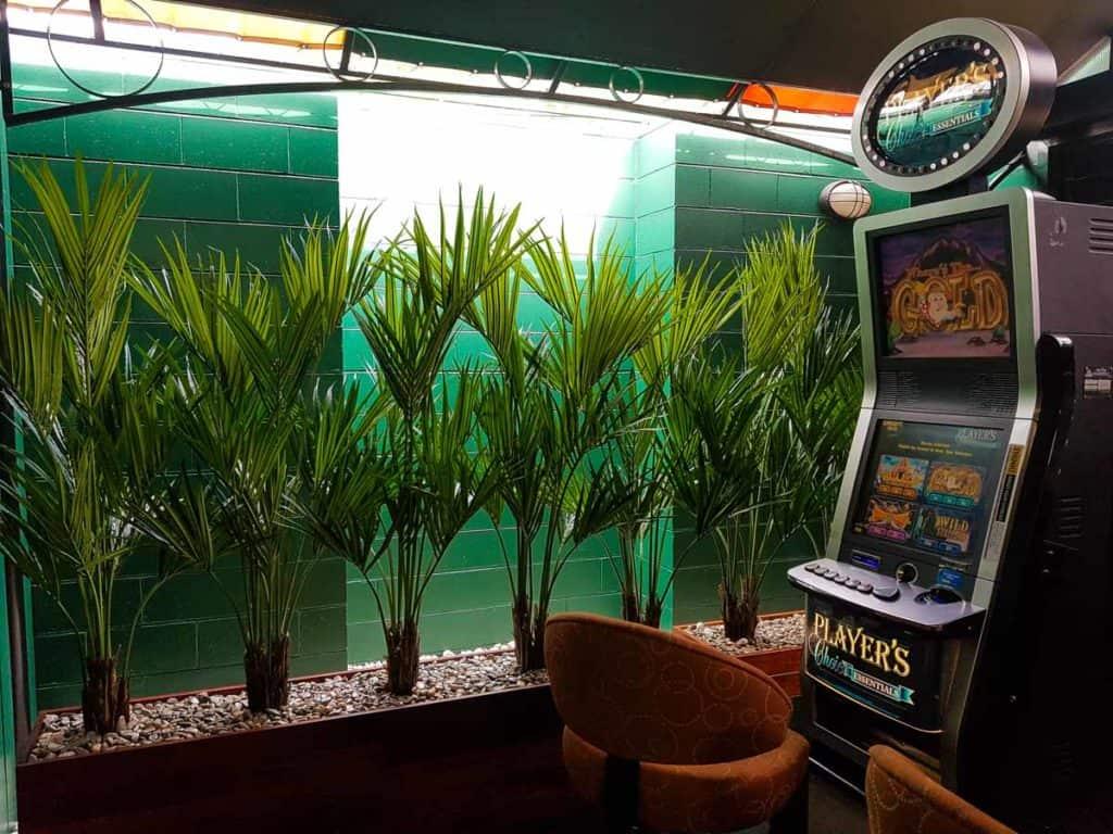 Artificial Plants at Fernhill Tavern