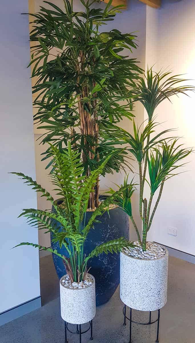 Artificial Plants at McGrath Real Estate