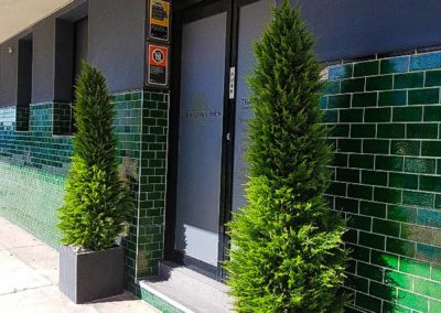 Artificial Plant Installation